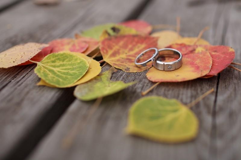 rings-IMG_3747